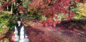 20181123 155217 300x146 - 大阪から行く滋賀の紅葉おすすめスポット。今年の見納めの紅葉は鶏足寺へ。