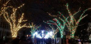 20181217 210549 300x146 - 大阪中之島のイルミネーション、光のルネッサンスもうすぐスタートです!