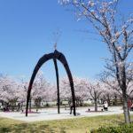 桜咲き春まっただ中!新たな出会いの準備はいいですか?